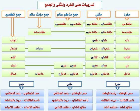 مدخل الى اللغة العربية بطاقات Apprendre L Arabe Cours D Arabe Langue Arabe