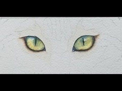 1 Wie Man Katzenaugen In Aquarell Malt Youtube Purrs