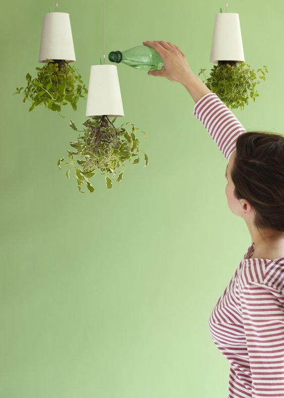 #design3000 SkyPlanter stellt die Pflanzenwelt auf den Kopf! #verticalgarden