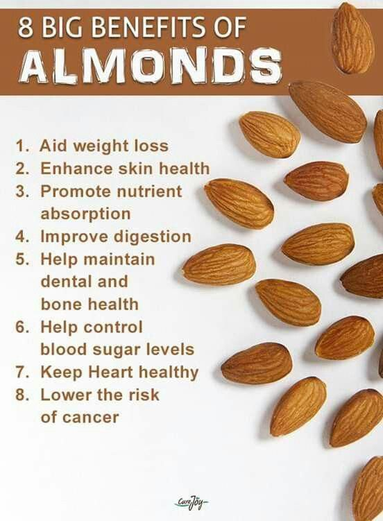 20+ Are walnuts good for osteoporosis info