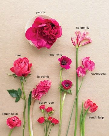 When it comes to flowers in this palette, the choices range from lipstick-bright roses to eye-popping peonies. In addition to these blushing beauties, you can find like-hued carnations, dahlias, gladiolas, snapdragons, and stock, depending on the time of year. You'll create the most drama if you stick to clear magenta shades, rather than mixing in wan, watered-down pastels. If your florist can't find a variety of flowers in exactly the right shade, pick only a few instead and use them en…