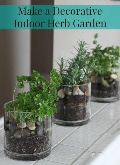 Make A Decorative Indoor Herb Garden Home Decor