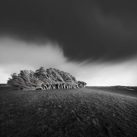 Slope Point - New Zealand - Luke Austin Soulscape Photography - Gallery