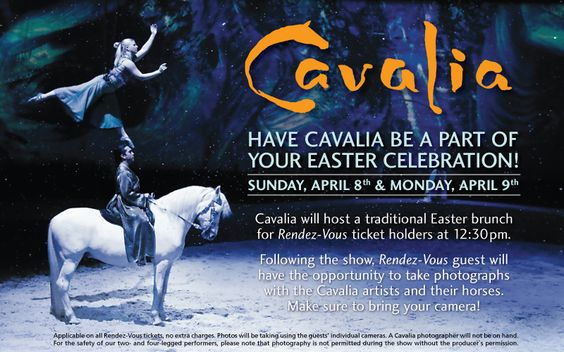 Cavalia - I will go to see this someday soon.
