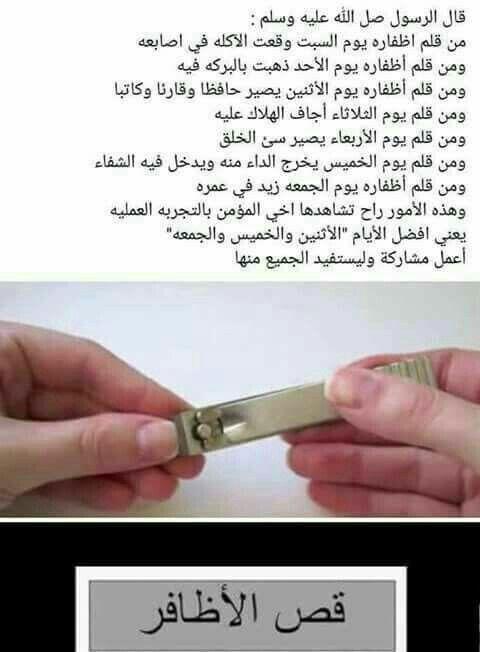 علومات اسلاميه In 2020 Islam Facts Islam Hadith Islam Beliefs