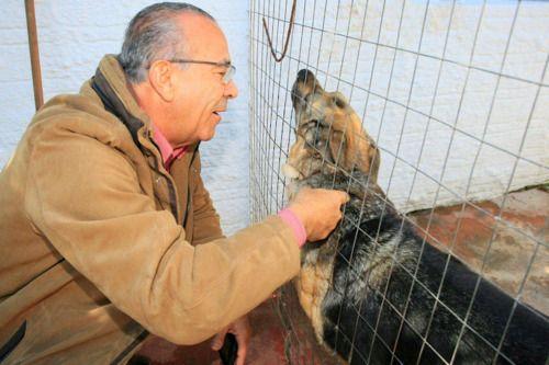 Eliseu Padilha propõe a criação do Estatuto dos Animais