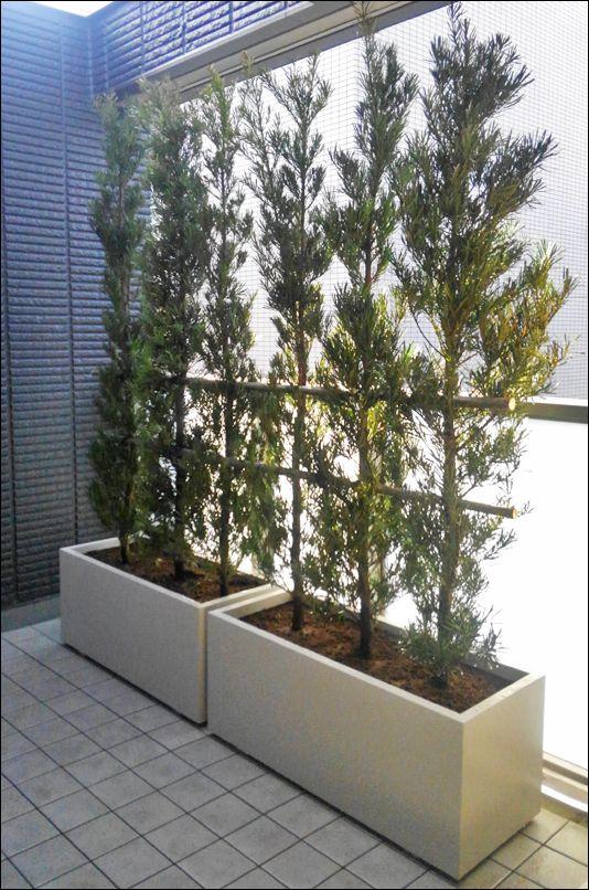 バルコニーへ設置したプランター生垣 生垣 庭 玄関 植木