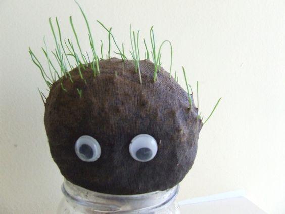 Kertészkedős játékötlet gyerekeknek