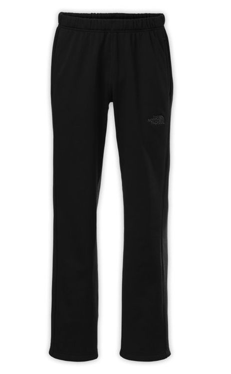 Surgent Pant in Black by The North Face