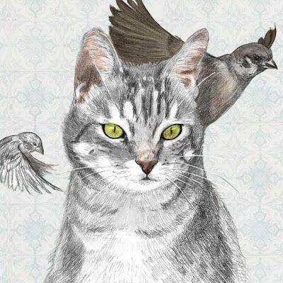 Illustratrice naturaliste & dessin animalier: Félins #3 Anis