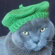 Free Patterns For Hats And Hair Bows For Dogs...ummm HILARIOUS!