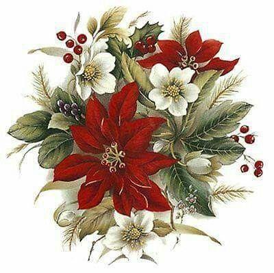 Christmas flowers: