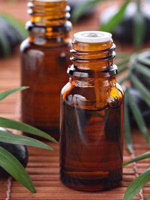 Recette à base d'huiles essentielles pour repousser les guêpes : Ces astuces et…