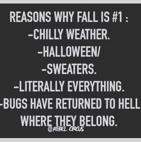 Super excited for Fall (I think I've said it 627391 times already) I hope…