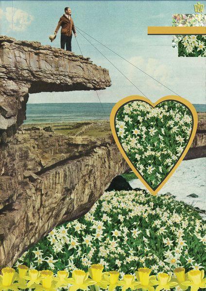 Daffodils by Dawn Gardner