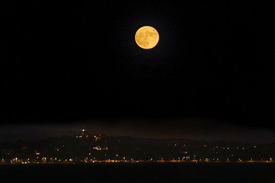 bonzour bonne zournée et bonne nuit notre ti nid za nous - Page 40 80638e36f02e20aa63accad89d2e3eee