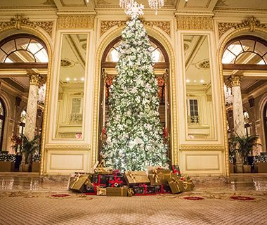 80 christmas tree lane ludlow vt chamber