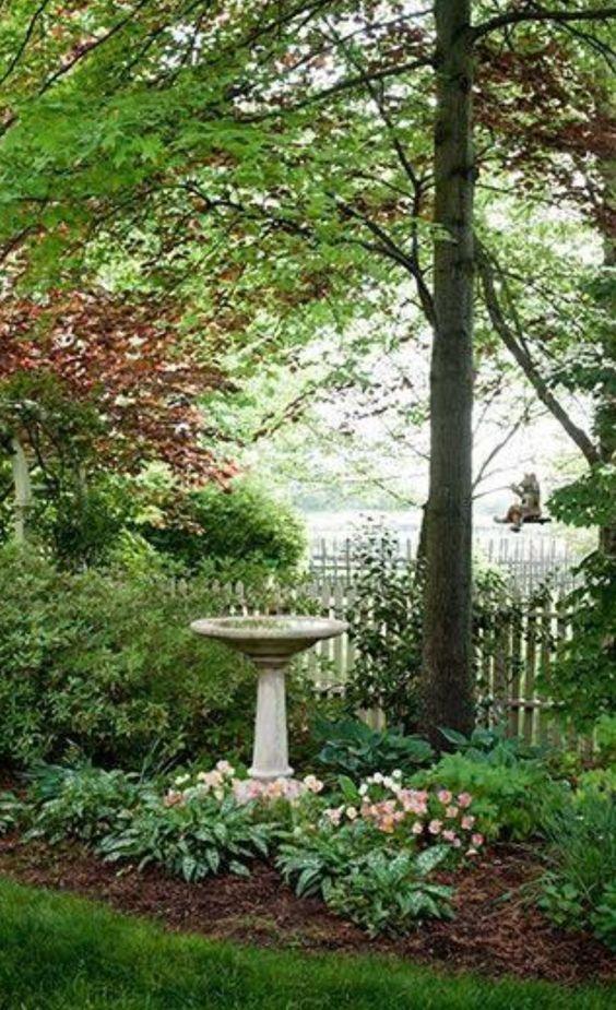 Lovely shaded area with bird bath