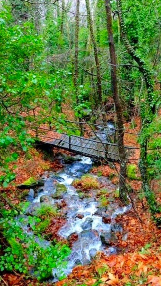 Ano Doliana, Mountainous Arcadia, Greece  source Flickr.com
