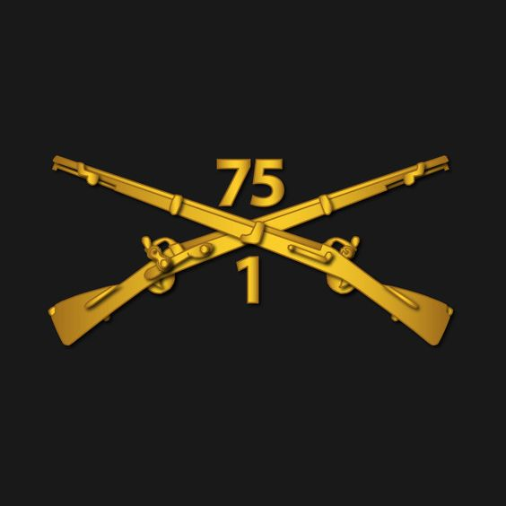 Check out this awesome '1st+Bn+-+75th+Infantry+Regiment+%28Ranger%29+Branch+wo+Txt' design on @TeePublic!