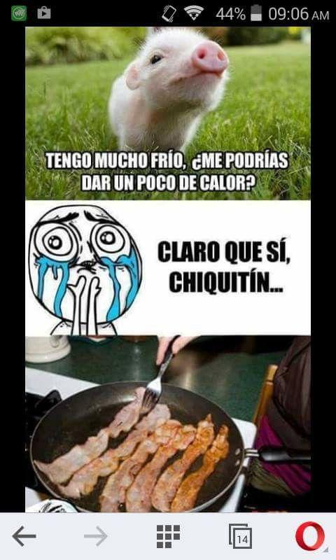 Pin De Nalleli Montano En Hunger Lol Meme Del Dia Frio Imagenes De Humor