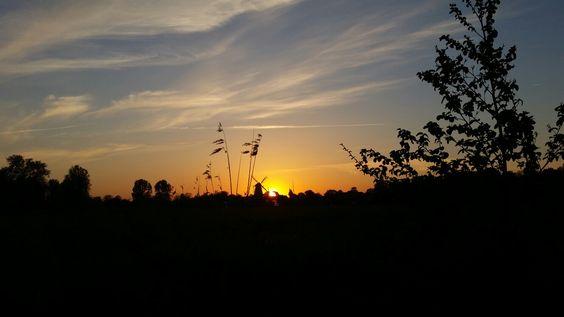 Sonnenuntergang mit Blick auf die Mühle in Hinte