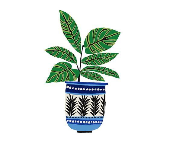 Brie Harrison Green Plant Giclée Print Illustration www.brieharrison.com