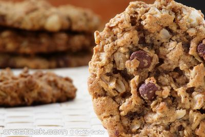 45 #calories for a cookie??!! I'm in :) Rocco Dispirito's Triple Chocolate Chip Cookies Recipe (45 Calories / 1.4g Fat / 2g Protein per Cookie)***
