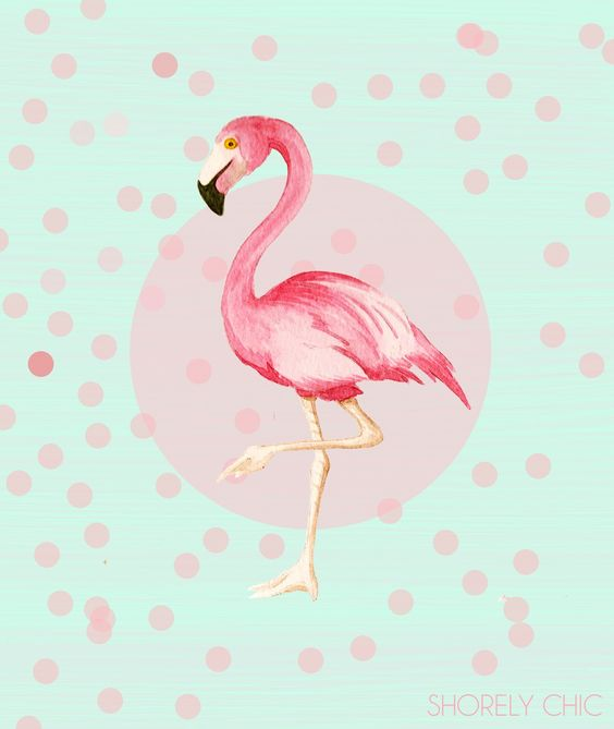 cute flamingos   ... to come up with a cute new flamingo print and here is what came out
