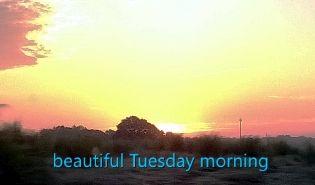 Beautiful days make beautiful memories