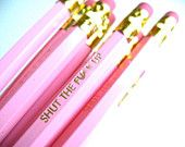 PENCILS (6) light pink - shut the fxck up - GRAPHITE HEX pencils w/ hand-stamped kraft pencil box