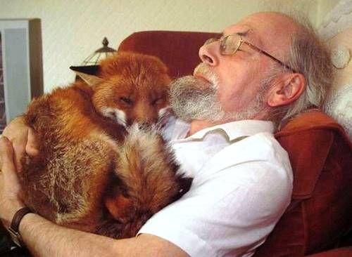 Des photographies de liens incroyables entre humains et animaux sauvages