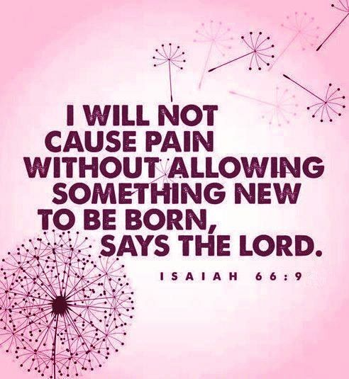 I will not cause pain without allowing something new to be born, says the LORD. // Isaiah 66:9