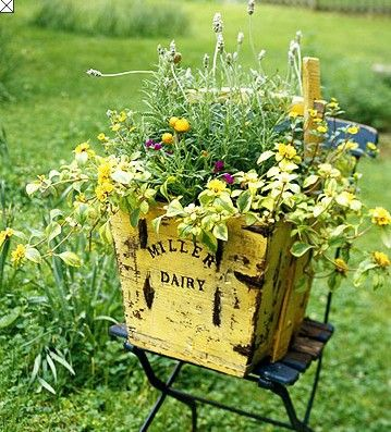 Yellow crate delight