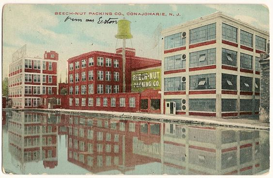Vintage postcard Beech-Nut packing Company