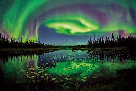 カナダ イエローナイフで体感できる オーロラのすべて|カナダ、感嘆の旅|CREA WEB(クレア ウェブ)