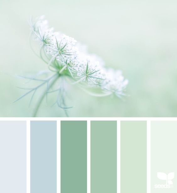"""master"" bedroom color scheme? (that's how I'm referring to the one connected ti the nursery) I think that palest green would be nice on the walls"