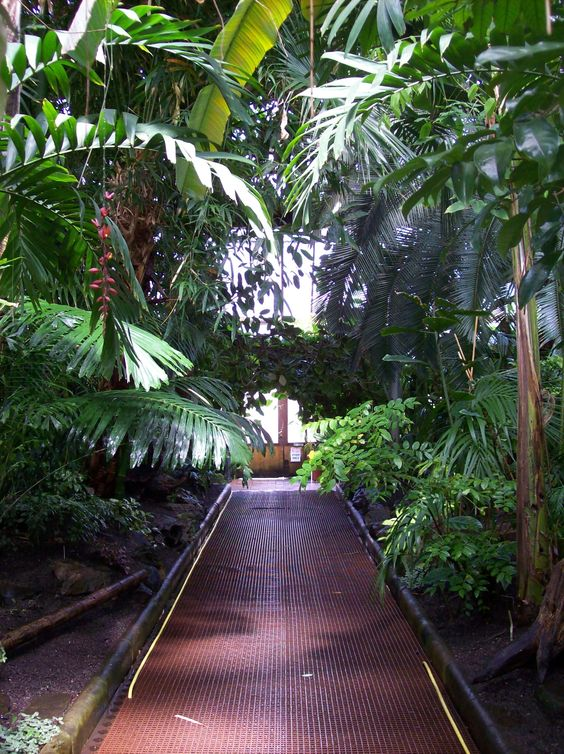 Garden Design Ideas Glasgow : Glasgow botanical gardens travel scotland