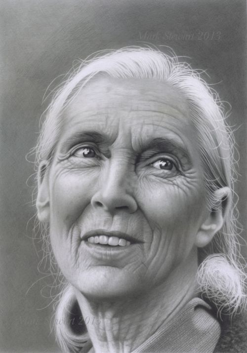 an introduction to the life of jane goodall Dr jane goodall first set foot in what is now known as gombe stream national park in 1960 when she launched her pioneering research with wild chimpanzees national geographic decides to sponsor jane's work and sends photographer and filmmaker hugo van lawick to document jane's life in.