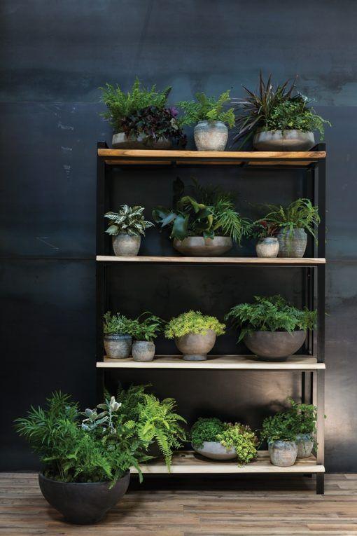 Parksdale Acacia Wood And Metal Frame Shelf Garden Shelves Plants Shelves