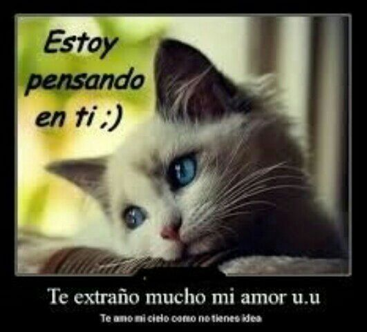 Para La Chica Te Extrano Mucho Unbelievable Funny Pictures Missing You Memes I Miss You Meme