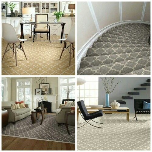 Some Great Photos Of Taza From Tuftex Carpets Of