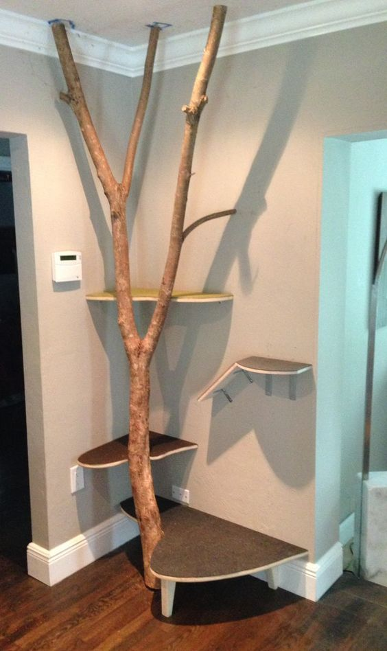 Alluring Real Tree Cat Tree Design Ideas With Brown Color Tree Boles And Combine With Wall Mounted Perchs As Well As Furniture For Condos  And Furniture Tower, Charming Design Ideas Of Cat Tree House: Furniture