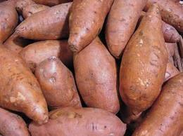 Come coltivare le patate dolci