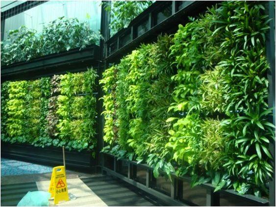 Cool DIY Garden Wall