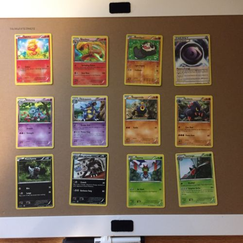 Pokémon Trading Card Lot 12 Cards (4 Are Holographic) https://t.co/rkgqXSIFmB https://t.co/1oli9VMDni
