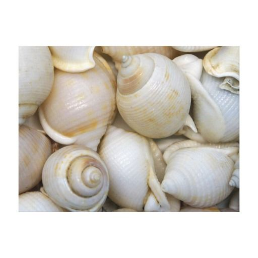 Setzen Sie Kunst auf Leinwandwanddekor mit hübschem künstlerischem Bild der Seashellskunst in diesem natürlichen noch Lebenbild auf den Strand. Seashellsmuster umfaßt die gesamte Leinwand mit einem Gefühl des Wiederholens der Schritte. Verzieren Sie jedes mögliches Wohnzimmer, Schlafzimmer oder Höhle auf eine tropische Art mit einer Touch der Natur und geben Sie Ihren Wänden etwas Charakter und Art. Farben umfassen Erdtöne, -pfirsich, -ROSA, -BEIGE und -WEISS.
