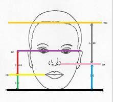 simetria facial - proporção áurea para face