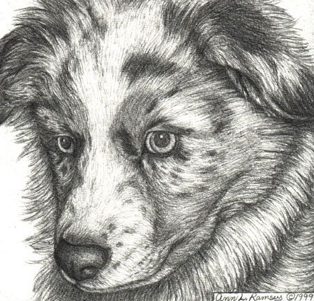 How can I draw 'meticulous'?