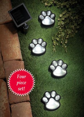 Animal Paw Print Solar Path and Garden Lights